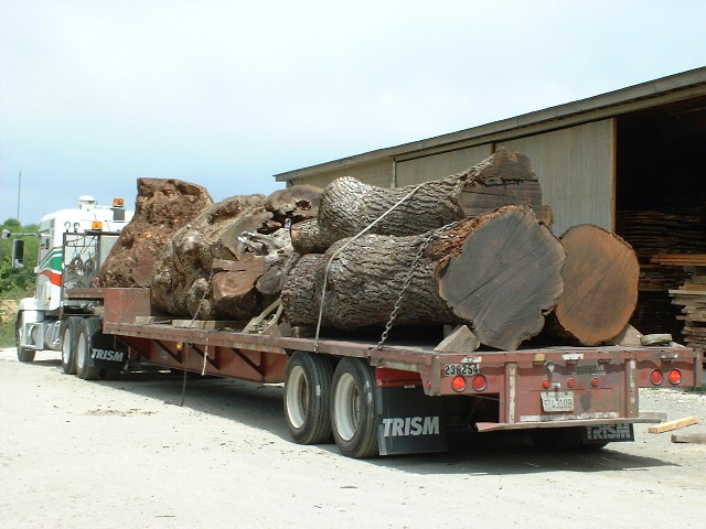 Nice load of Claro Walnut logs and Big Leaf Maple burls.